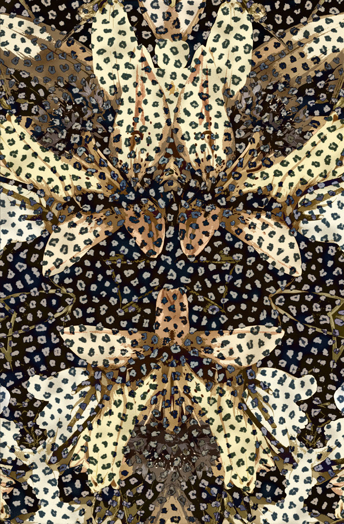05-simonetta-de-simone-patternbank-textile-studio