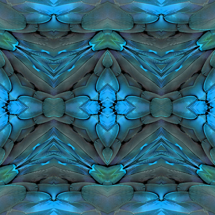 12-simonetta-de-simone-patternbank-textile-studio